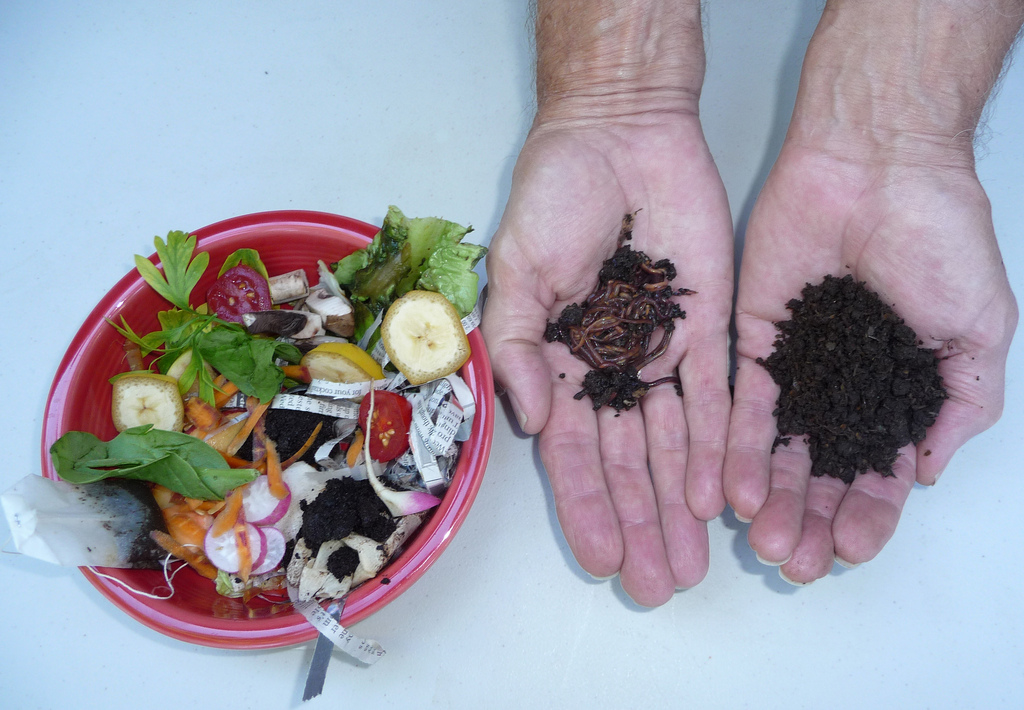 Ways to make your own compost