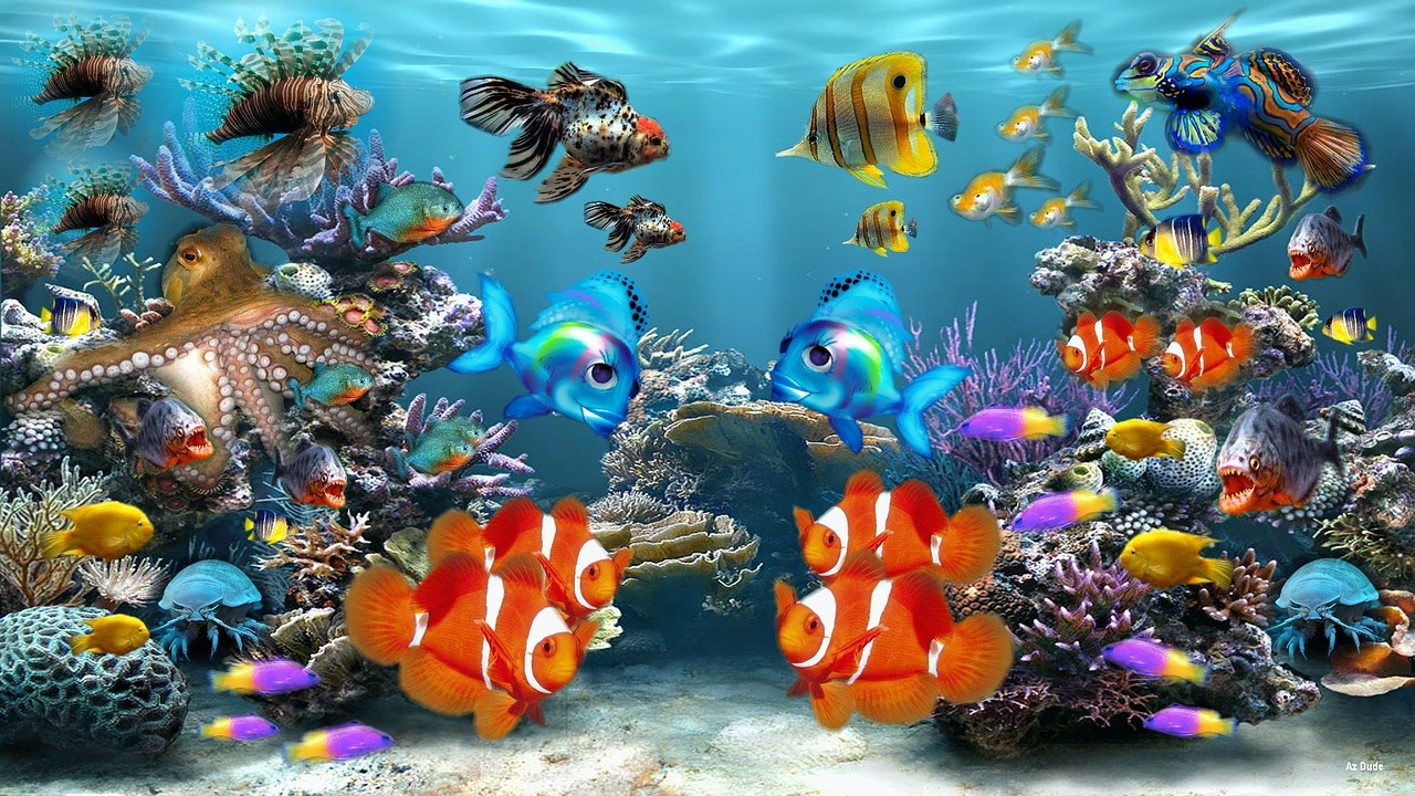 Aquarium Maintenance Tips With pet ownership comes great responsibility
